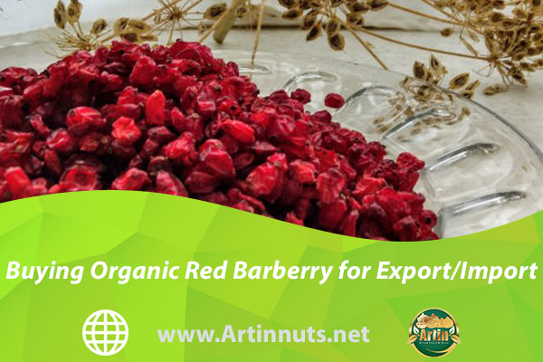 Buying Organic Red Barberry for Export/Import