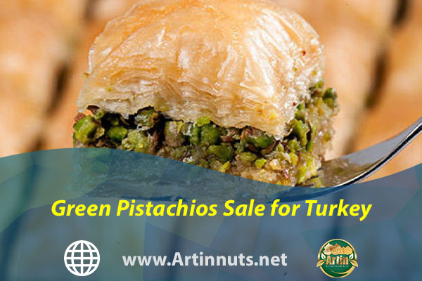 Green Pistachios Sale for Turkey