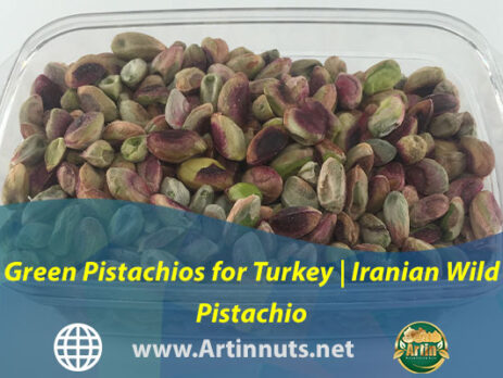 Green Pistachios for Turkey | Iranian Wild Pistachio