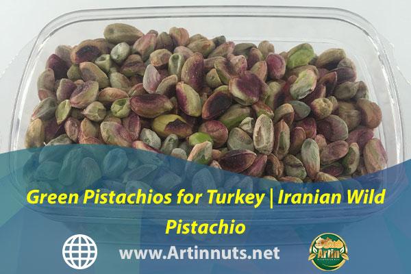 Green Pistachios for Turkey   Iranian Wild Pistachio