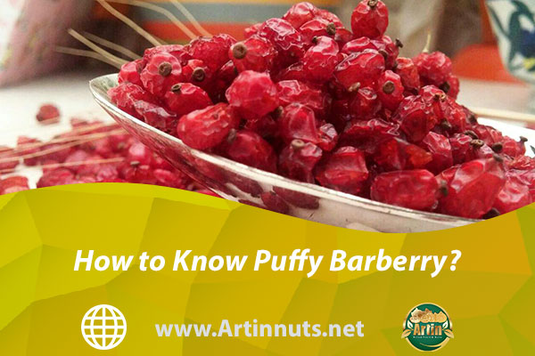 How to Know Puffy Barberry?