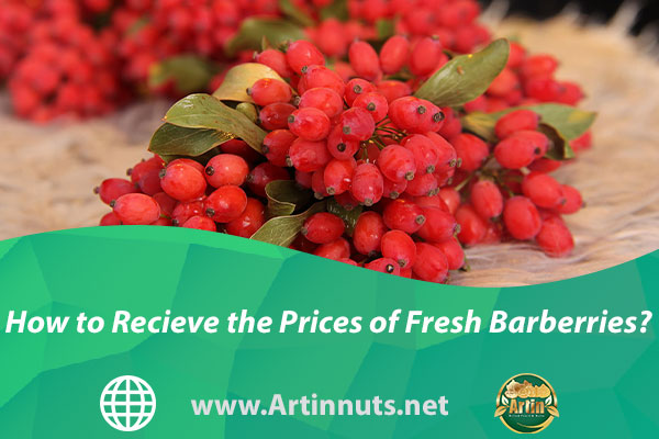 How to Recieve the Prices of Fresh Barberries?
