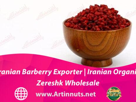 Iranian Barberry Exporter | Iranian Organic Zereshk Wholesale