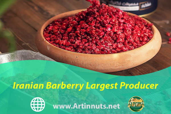 Iranian Barberry Largest Producer