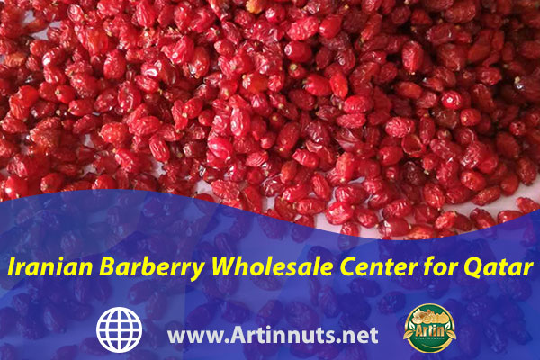 Iranian Barberry Wholesale Center for Qatar