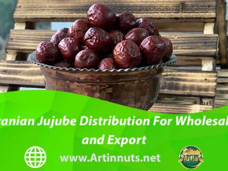 Iranian Jujube Distribution For Wholesale and Export