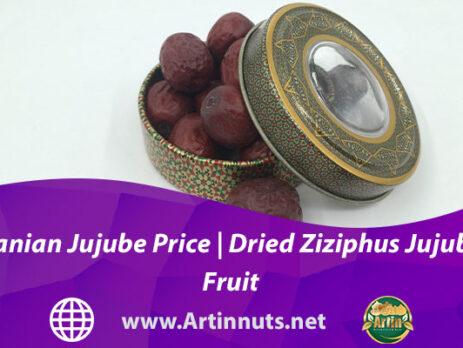 Iranian Jujube Price | Dried Ziziphus Jujuba Fruit