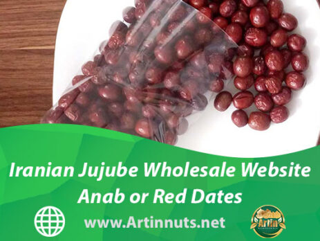Iranian Jujube Wholesale Website   Anab or Red Dates