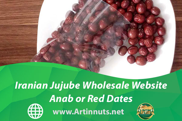 Iranian Jujube Wholesale Website | Anab or Red Dates