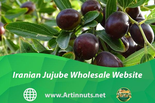 Iranian Jujube Wholesale Website