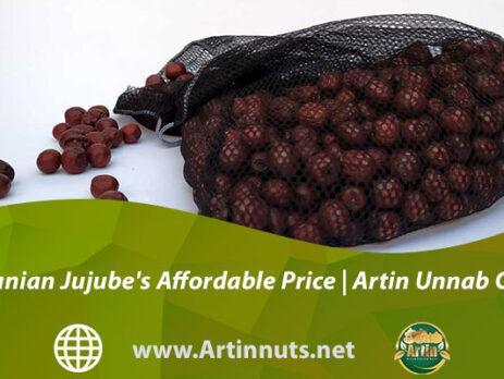 Iranian Jujube's Affordable Price   Artin Unnab Co.