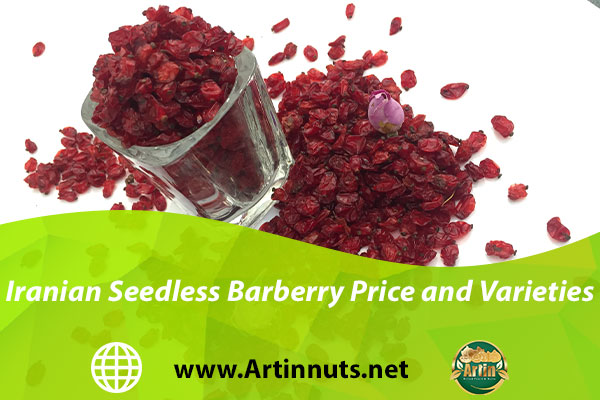 Iranian Seedless Barberry Price and Varieties