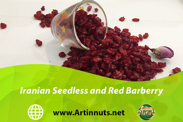 Iranian Seedless and Red Barberry
