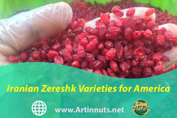 Iranian Zereshk Varieties for America