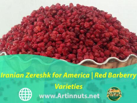 Iranian Zereshk for America | Red Barberry Varieties