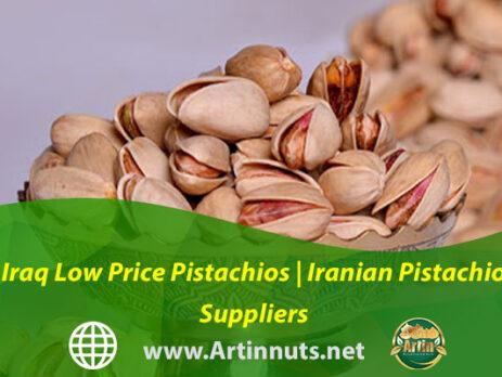 Iraq Low Price Pistachios | Iranian Pistachio Suppliers
