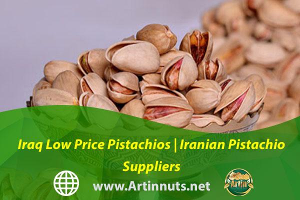 Iraq Low Price Pistachios   Iranian Pistachio Suppliers