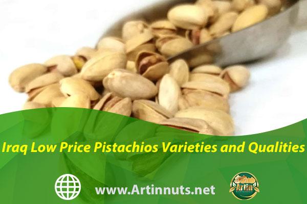 Iraq Low Price Pistachios Varieties and Qualities