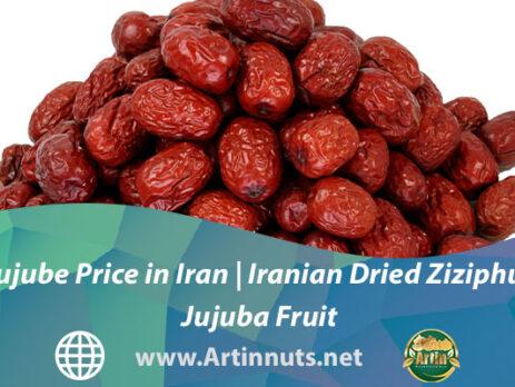 Jujube Price in Iran | Iranian Dried Ziziphus Jujuba Fruit