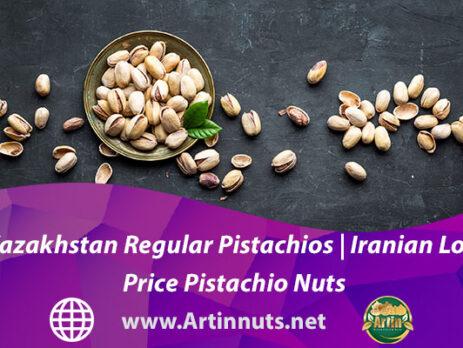 Kazakhstan Regular Pistachios | Iranian Low Price Pistachio Nuts