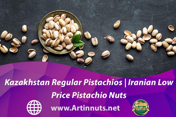 Kazakhstan Regular Pistachios   Iranian Low Price Pistachio Nuts