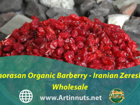 Khorasan Organic Barberry - Iranian Zereshk Wholesale