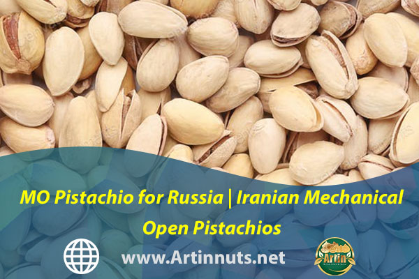 MO Pistachio for Russia   Iranian Mechanical Open Pistachios
