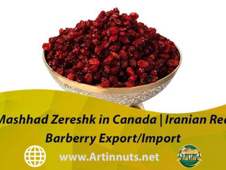 Mashhad Zereshk in Canada | Iranian Red Barberry Export/Import