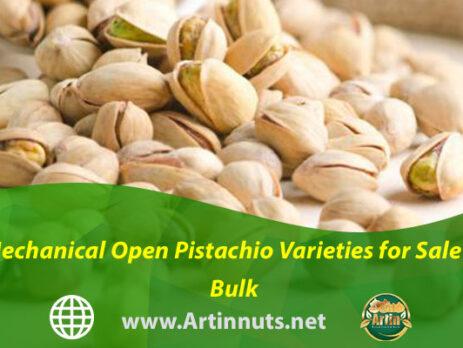 Mechanical Open Pistachio Varieties for Sale in Bulk