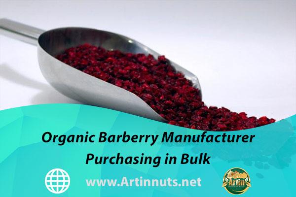 Organic Barberry Manufacturer   Purchasing in Bulk