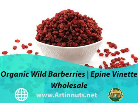 Organic Wild Barberries | Epine Vinette Wholesale