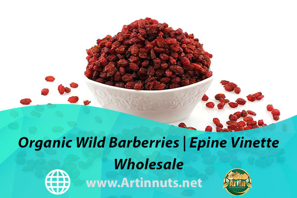 Organic Wild Barberries   Epine Vinette Wholesale