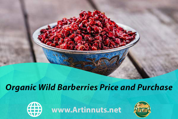 Organic Wild Barberries Price and Purchase
