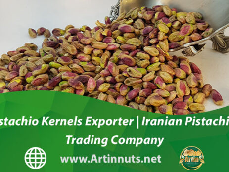 Pistachio Kernels Exporter | Iranian Pistachios Trading Company