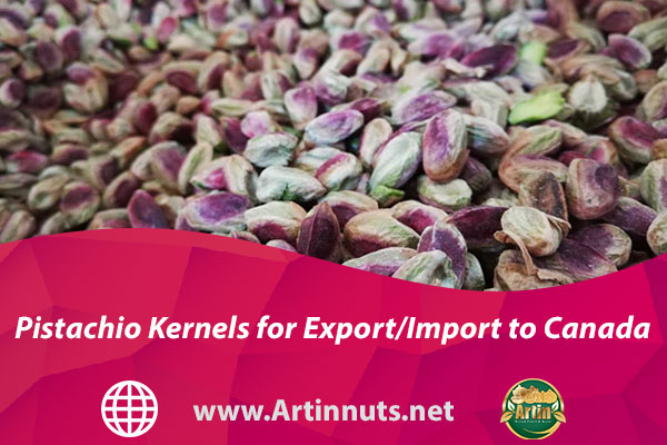 Pistachio Kernels for Export/Import to Canada