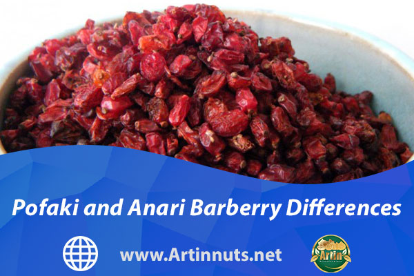 Pofaki and Anari Barberry Differences