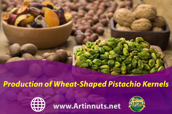 Production of Wheat-Shaped Pistachio Kernels