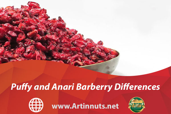 Puffy and Anari Barberry Differences