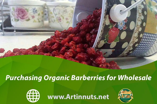 Purchasing Organic Barberries for Wholesale
