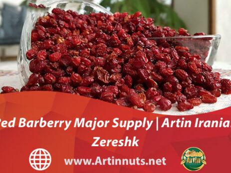 Red Barberry Major Supply | Artin Iranian Zereshk