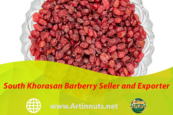 South Khorasan Barberry Seller and Exporter
