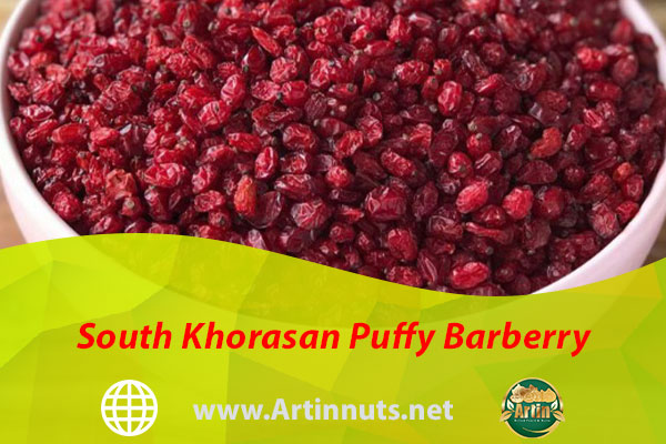 South Khorasan Puffy Barberry