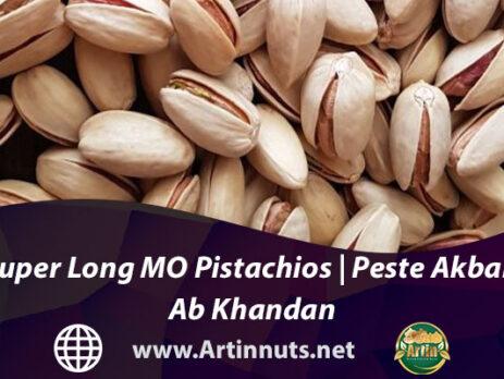 Super Long MO Pistachios | Peste Akbari Ab Khandan