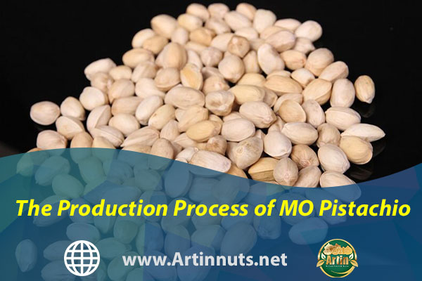 The Production Process of MO Pistachio