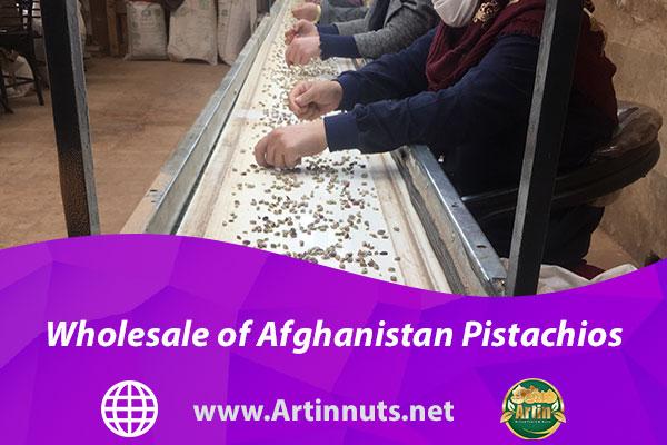 Wholesale of Afghanistan Pistachios