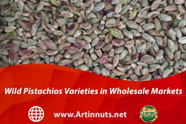 Wild Pistachios Varieties in Wholesale Markets