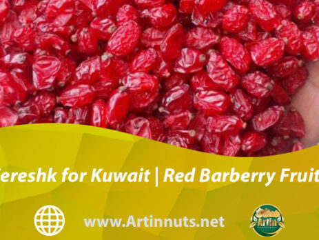 Zereshk for Kuwait | Red Barberry Fruits