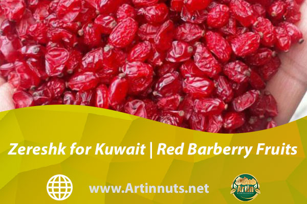 Zereshk for Kuwait   Red Barberry Fruits