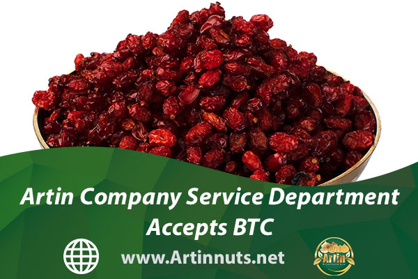 Artin Company Service Department Accepts BTC