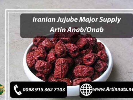 Iranian Jujube Major Supply